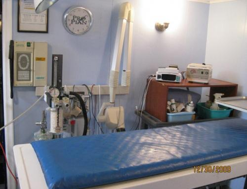 Surgery table2 LARGE